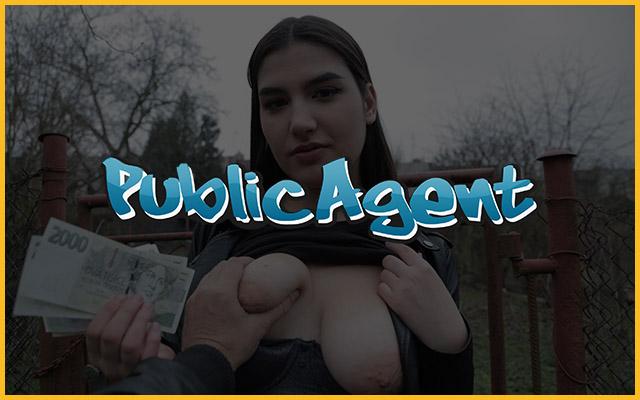 Public Agent Porn - Fake Hub